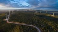 Dezoito novas usinas e�licas entram em opera��o na Bahia
